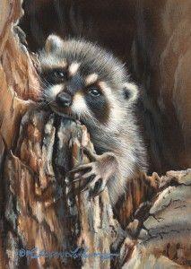 """Daydream""- watercolor on board By Rebecca Latham, wildlife artist."