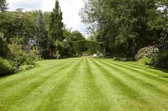 Sweeping view of a lawn