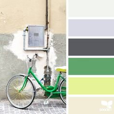 Color palette by designseeds.