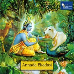 Annada Ekadasi is a sin removing Ekadasi.Any person who fasts on this day becomes free of all reactions to his sins.