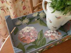 Cajas de Fresas reutilizadas