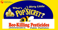 URGENT, PLEASE SIGN & SHARE~ I am very concerned about the use of neonicotinoid insecticides as a coating on seeds used to grow your company's popcorn products. As you may know, bees & other pollinators are suffering alarming population losses, & scientists consistently identify pesticides, specifically a group of insecticides called neonicotinoids, as a primary factor in poor pollinator health.