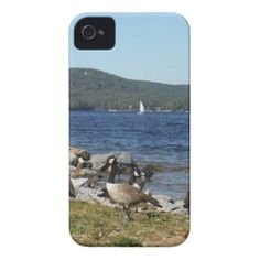 Geese and Lake with Sailboat iPhone 4 Case-Mate Case