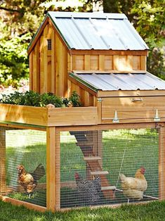 Cutest chicken coop ever!...... love this, especially when garden space is limited