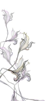 Karin Meyn | Flower illustration, purple leaves