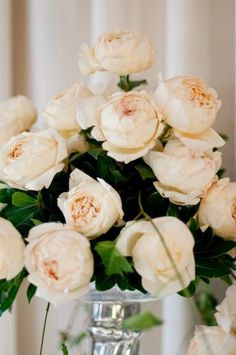 Cream Yves Piaget Roses. Order David Austin roses and other scented garden roses online @ European distributor: www.parfumflowercompany.com