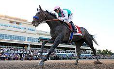World Class: Pegasus star Arrogate could go higher still https://www.racingvalue.com/world-class-pegasus-star-arrogate-could-go-higher-still/