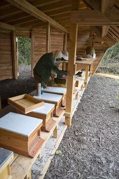 Het bijenpaleis raakt langzaamaan bewoond... (webted) Tags: dronten eerste triodos bijen bewoners landgoed bijenstal drieramer roggebotstaete bijenvolken triodosbijen bijenparadijs bijenpaleis