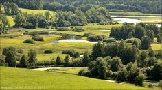 Šumava-Meandry a rozlitiny. Ze západu do Lipna meandrovitě vtéká Teplá Vltava, vytváří zde systém rozlitin plných barevných kytek a travin.