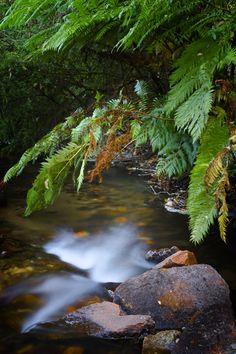 _EBT4750 Western Australia, Tourism, Waterfall, Surfing, Coast, River, World, Photography, Outdoor