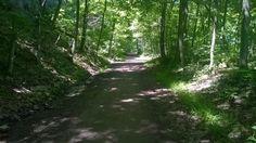 Chedoke Radial Trail