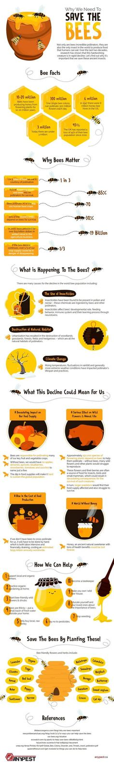 Why We Need To Save The Bees #Infographic #Environment #Bees