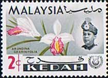 Malay State of Kedah 1965 Orchids SG 116 Fine Mint SG 116 Scott 107 Other British Commonwealth Stamps to see here
