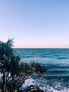burleigh heads, Australia. Such an amazing Australian beach. Repin this for some travel inspiration later