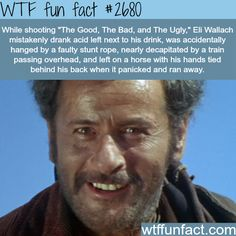 WTF Fun Facts is updated daily with interesting & funny random facts. We post about health, celebs/people, places, animals, history information and much more. New facts all day - every day! Wtf Fun Facts, True Facts, Funny Facts, Funny Memes, Random Facts, Crazy Facts, Random Stuff, Strange Facts, Real Facts