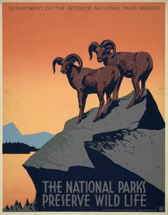 Beautiful WPA/Department of the Interior/National Parks Poster - c. 1930s