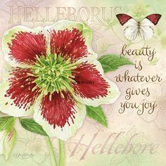 ❤️Jane Shasky ~ botanical hellebore