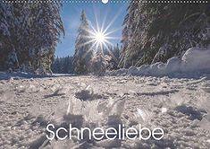 Petra, Calendar, Europe, Snow, Seasons, Landscape, Bergen, Beach, Winter