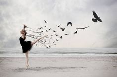 Dancer photography ballet on the beach with ribbons birds Dance Photography, Creative Photography, Photography Awards, Artistic Photography, Ballerina Photography, Surrealism Photography, Contemporary Photography, Photography Photos, White Photography