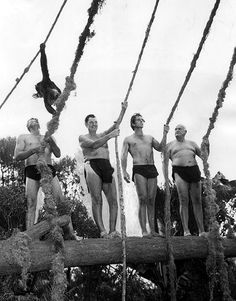 Jock Mahoney, Johnny Weissmuller, Ron Ely and James Pierce gather in 1966 to promote the new NBC series Tarzan starring Ron Ely.