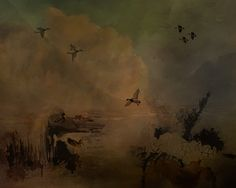 Ducks and geese fly and swim as dawn breaks over the mountains.