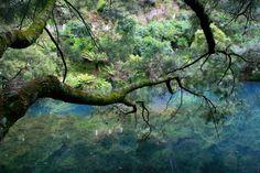 Jenolan Caves NSW Australia