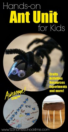Hands on ANT unit for kids - includes tons of ant craft, ant activities and more for toddler, preschool, prek, kindergarten, first grade, second grade to explore bugs and science at home, for summer learning, and homeschooling