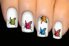 BUTTERFLY SERIES Nail Art Water Transfer Decal Sticker- ♥ Prismatic ♥ SY-032