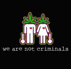 No sir!!!✌♥☺#DrugWar #marijuana