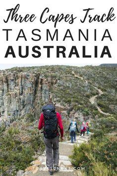 The Three Capes Track in Tasmania is a multi-day walk on the Tasman Peninsula. #australia #tasmania #capestrack #adventuretravel