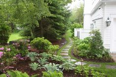 This would be great between my yard and the neighbors...never thought of this...bp narrow path leading from front yard to backyard