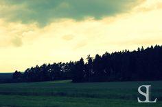 Sommergewitter - Waldrand