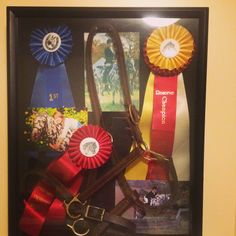 A shadow box for Pebbles. A good way to use old horse show ribbons!!