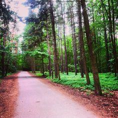 Milujete přírodu, ale zdá se vám, že v Praze jí moc není? Jste na omylu. Podívejte se na tipy na výlet v Praze pro ty z vás, kteří milují přírodu. Country Roads
