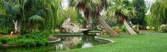 Botànic Cullera - Jardín Botánico en Cullera www.aticocullera.es ático de alquiler en Cullera