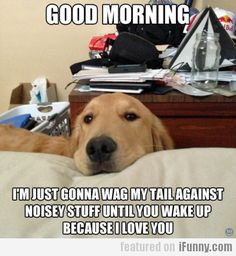 Good Morning! I'm Just Gonna Wag My Tail...