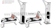 Target your triceps brachii with the lying cable skull crusher, an isolation exercise. Keep your elbows in to avoid chest and shoulder recruitment. Skull Crusher Exercise, Big Biceps Workout, Trx, Weight Training, Cable, Arm Exercises, Fitness, Cabo, Electrical Cable