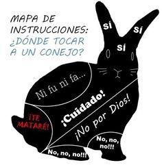 ¿sabes como tocar a un conejo? ;)