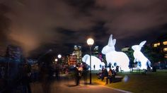 Intrude by Amanda Parer at the Southbank Centre