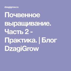Почвенное выращивание. Часть 2 - Практика.   Блог DzagiGrow