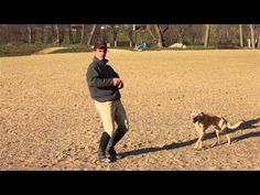 Picking Up the Correct Canter Lead - YouTube