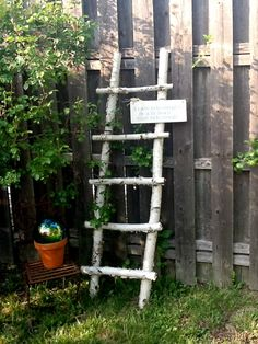 Make a ladder out of fallen aspen branches, a nice garden accent (or I am thinking indoors with blankets on the rungs)