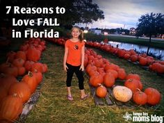 7 Reasons to Love Fall in Florida |