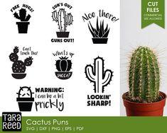 ebd85fe1 8 Best Cactus Cat Pun Shirt images | Cactus shirt, Cat puns, Pun shirts