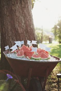 watermelon with flags