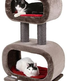 Rubin Cat Tree
