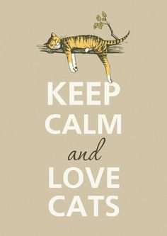 Keep calm and love cats - this my new motto - who would have ever guessed I would become a crazy cat lady??!!