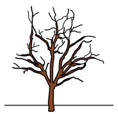 talvinen puu - Google-haku