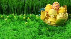 Check out some best Happy Easter 2017 Photos, Easer Photos, Best Easter Photos, Easter Bunny Photos, Happy Easter Bunny Photos. Happy Easter Photos, Easter Bunny Pictures, Happy Easter Wishes, Easter Bunny Eggs, Happy Easter Bunny, Spring Wallpaper, Full Hd Wallpaper, Ostern Wallpaper, Eggs In A Basket