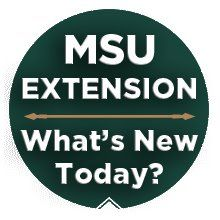 Crowdfunding for youth: raising funds for service projects and developing life skills |     MSU Extension
